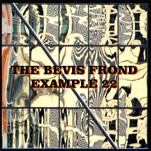 The Bevis Frond - Example 22