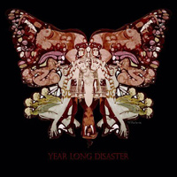 Year Long Disaster - The Fool And You