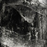Abyssal - Novit Enim Dominus Qui Sunt Eius