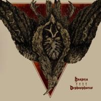 Haapoja / Dephosphorus - Collaboration LP