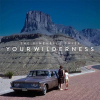 The Pineapple Thief - Your Wilderness