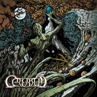 Cerebrum - Iridium