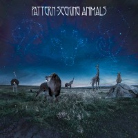 Pattern-Seeking Animals - Pattern Seeking Animals