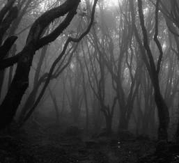 «10»: Black metal μνημεία των 90s