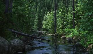 To Enter Pagan #2: Η ιστορία, ο μύθος, το νερό