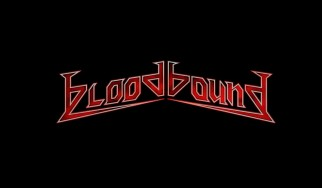 «A Buyer's Guide»: Bloodbound