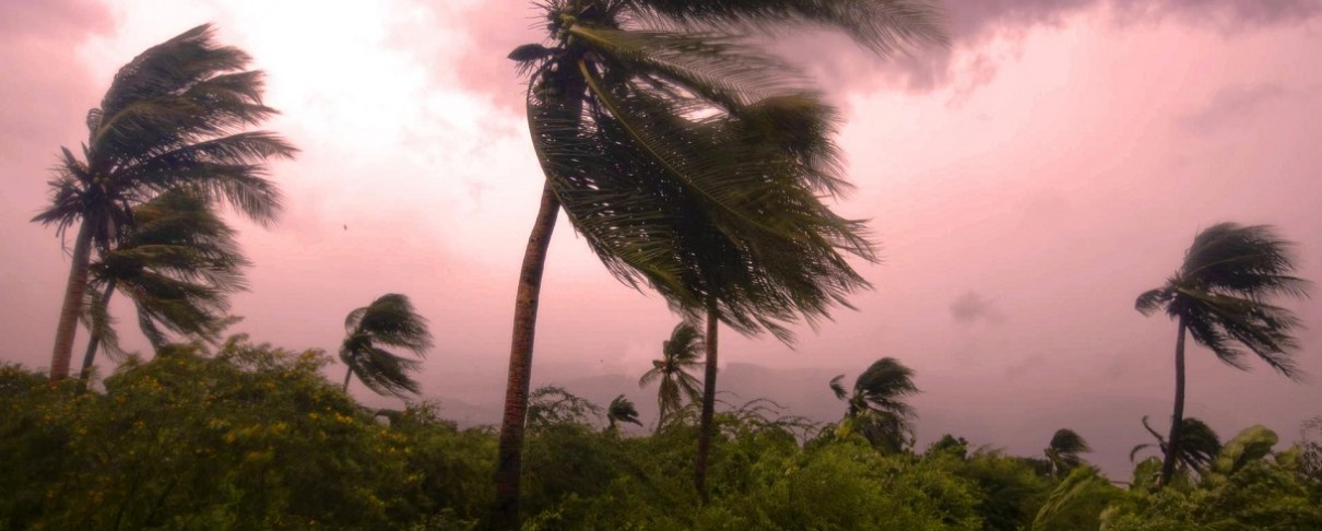 Headbanging υπό τον ήχο των Slayer εν μέσω του τυφώνα Matthew! (video)