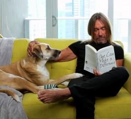Ο Νick Cave βάζει τη μουσική, ο Iggy Pop και ο σκύλος του πρωταγωνιστούν…