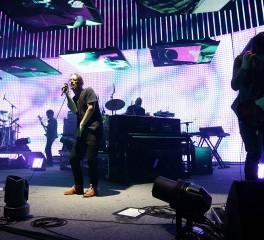 Οι Radiohead δανείζουν το όνομά τους σε νέο είδος μυρμηγκιών
