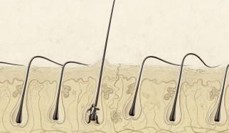 Έρευνα: Αν η μουσική σου προκαλεί ρίγη, τότε ο εγκέφαλός σου ίσως είναι ξεχωριστός!