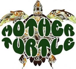 Σε streaming ολόκληρος ο δίσκος των Ελλήνων prog rockers Mother Turtle