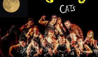 """Το μιούζικαλ """"Cats"""" στο Αθηνά Live"""
